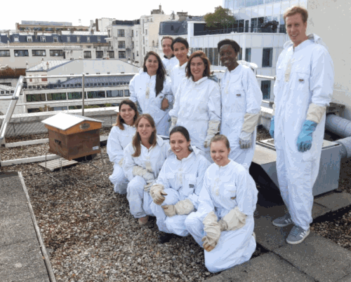 Collaborateurs Julhiet Sterwen pour la visite des ruches